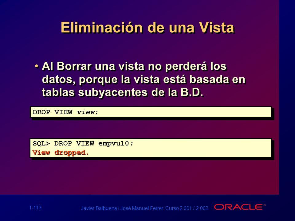1-113 Javier Balbuena / José Manuel Ferrer. Curso 2.001 / 2.002 Eliminación de una Vista Al Borrar una vista no perderá los datos, porque la vista est