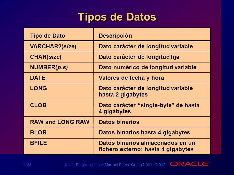 1-60 Javier Balbuena / José Manuel Ferrer. Curso 2.001 / 2.002 Tipos de Datos Tipo de DatoDescripción VARCHAR2(size)Dato carácter de longitud variable