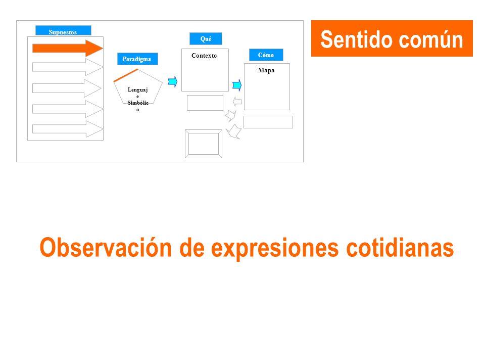 Sentido común Supuestos Paradigma Qué Cómo Contexto Mapa Lenguaj e Simbólic o Cambio Observación de expresiones cotidianas