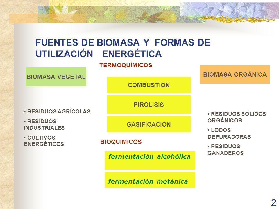 13 PREVISIONES DE UTILIZACIÓN DE BIOMASA EN EL REINO UNIDO ESTUDIOS REALIZADOS POR ETSU ESTIMAN PARA EL AÑO 2005 LA PRODUCCIÓN DE ELECTRICIDAD A PARTIR DE BIOMASA ( PRODUCCIÓN DE ELECTRICIDAD 300TWh/año) Energía TWh /año COMBUSTIÓN DE RESIDUOS SÓLIDOS URBANOS 12 VERTEDEROS CONTROLADOS 8 RESIDUOS FORESTALES Y AGRÍCOLAS 5 CULTIVOS ENERGÉTICOS22