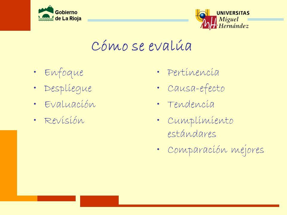 Ciclo de mejora de la gestión Autoevaluación Identificación de puntos fuertes y áreas de mejora Priorización /consenso de las áreas de mejora según la