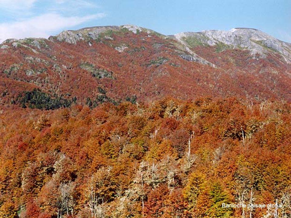 16 Bariloche paisaje otoñal