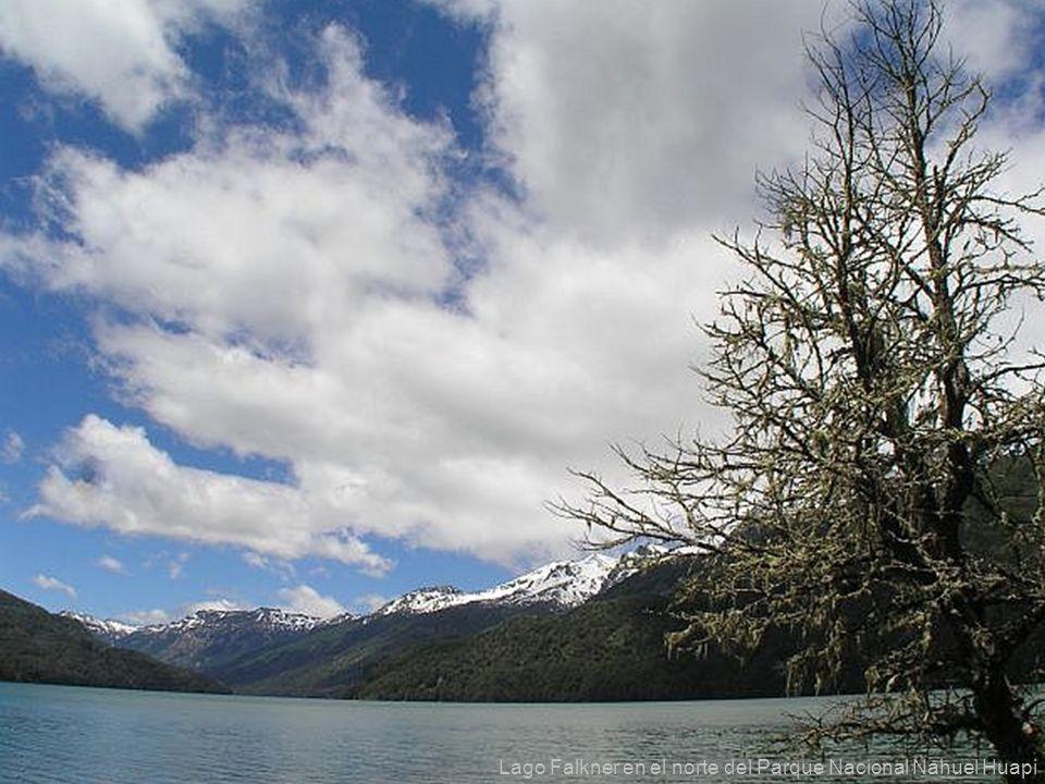 32 Lago Falkner en el norte del Parque Nacional Nahuel Huapi