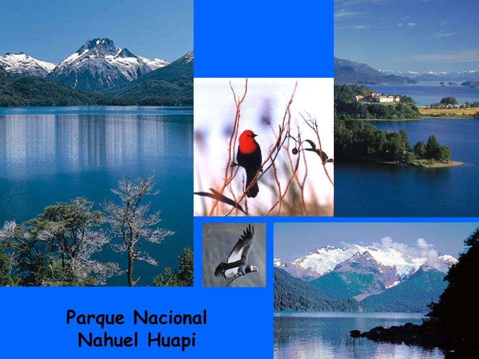 5 Parque Nacional Nahuel Huapi