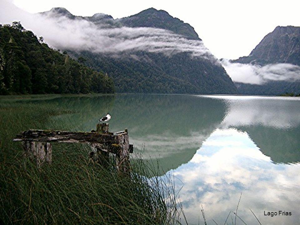 50 Lago Frias