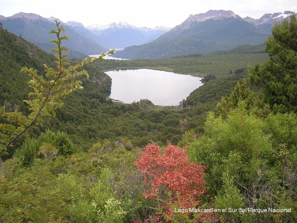52 Lago Mascardi en el Sur del Parque Nacional