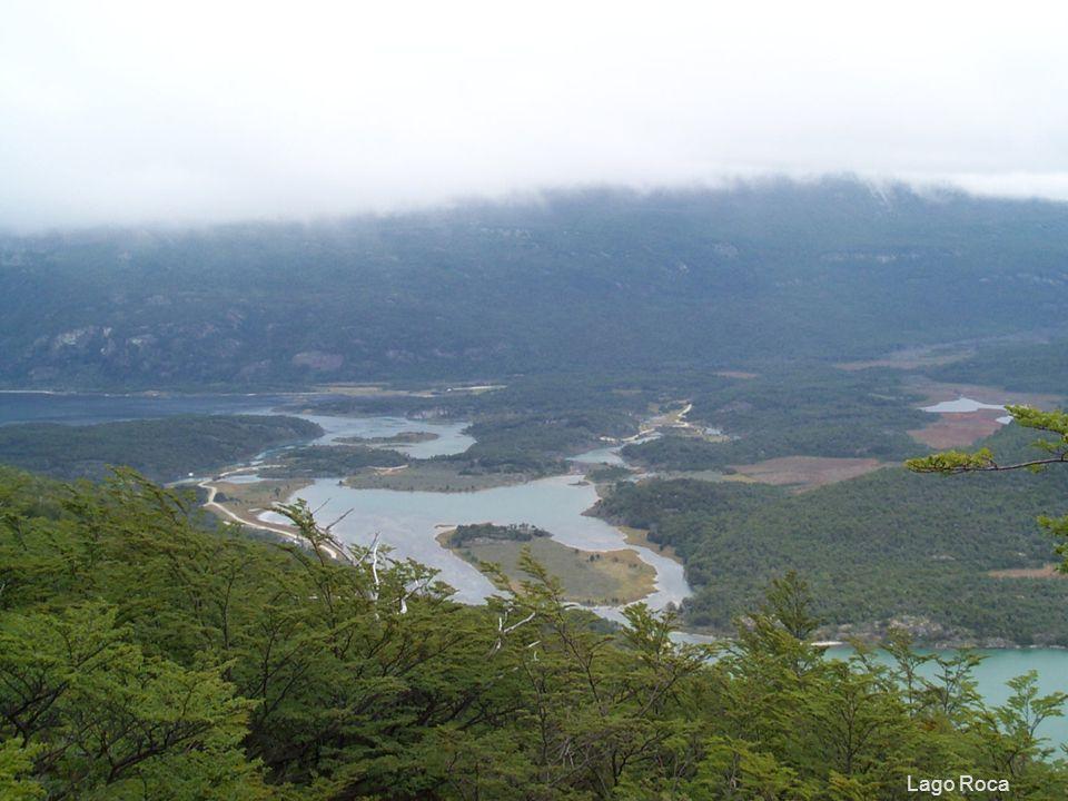 55 Lago Roca