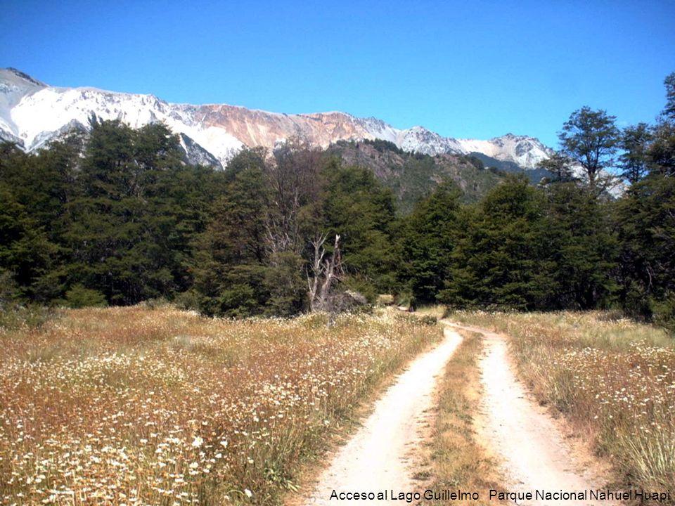 56 Acceso al Lago Guillelmo Parque Nacional Nahuel Huapi