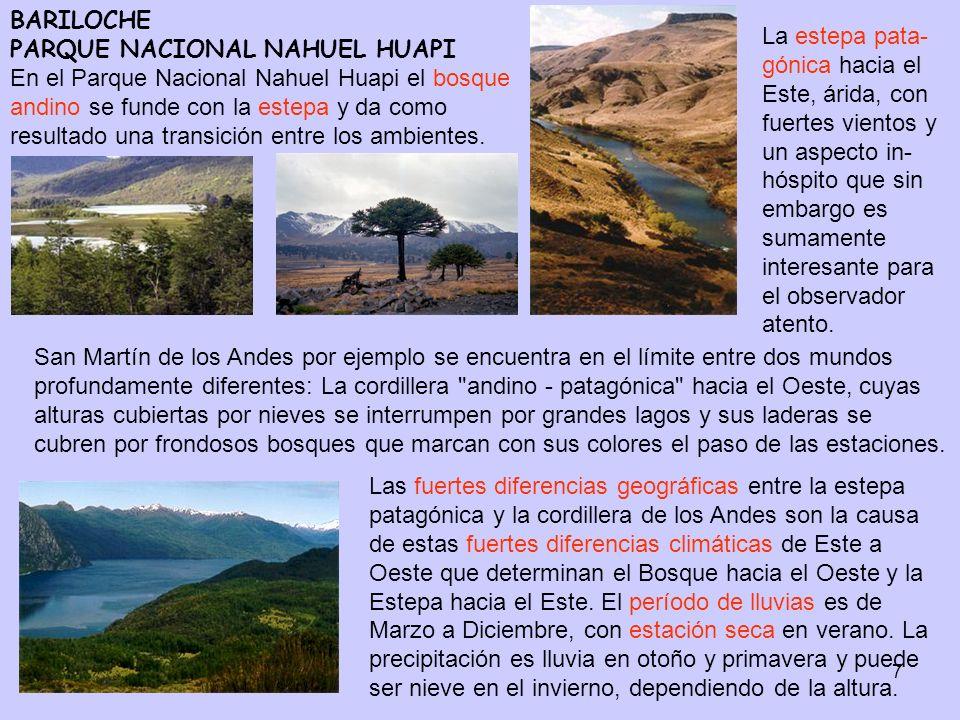 7 BARILOCHE PARQUE NACIONAL NAHUEL HUAPI En el Parque Nacional Nahuel Huapi el bosque andino se funde con la estepa y da como resultado una transición