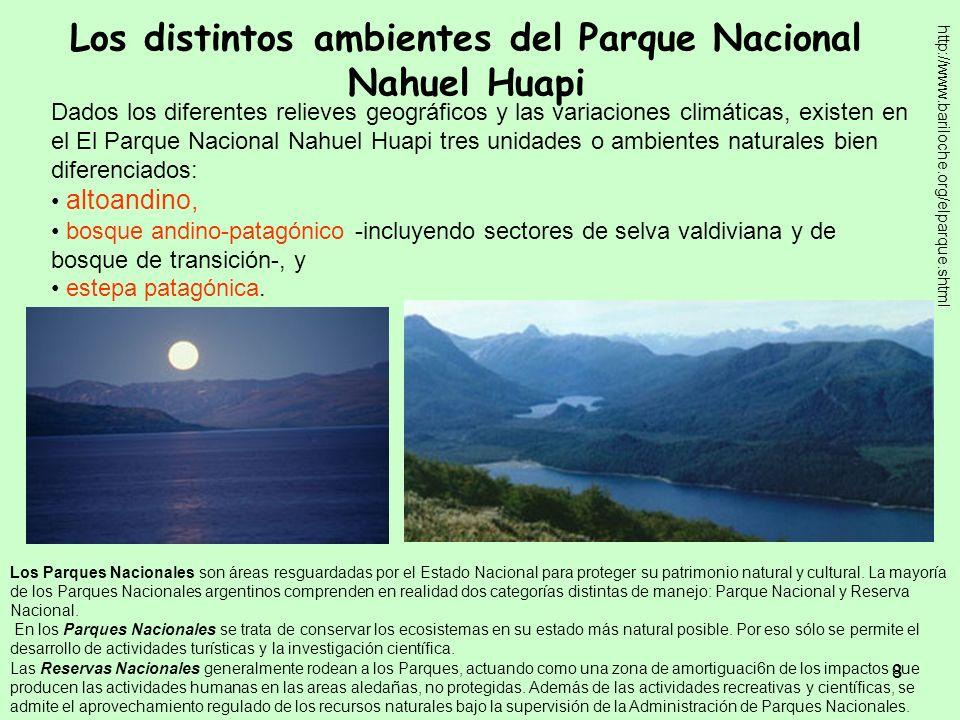 8 Los distintos ambientes del Parque Nacional Nahuel Huapi Dados los diferentes relieves geográficos y las variaciones climáticas, existen en el El Pa