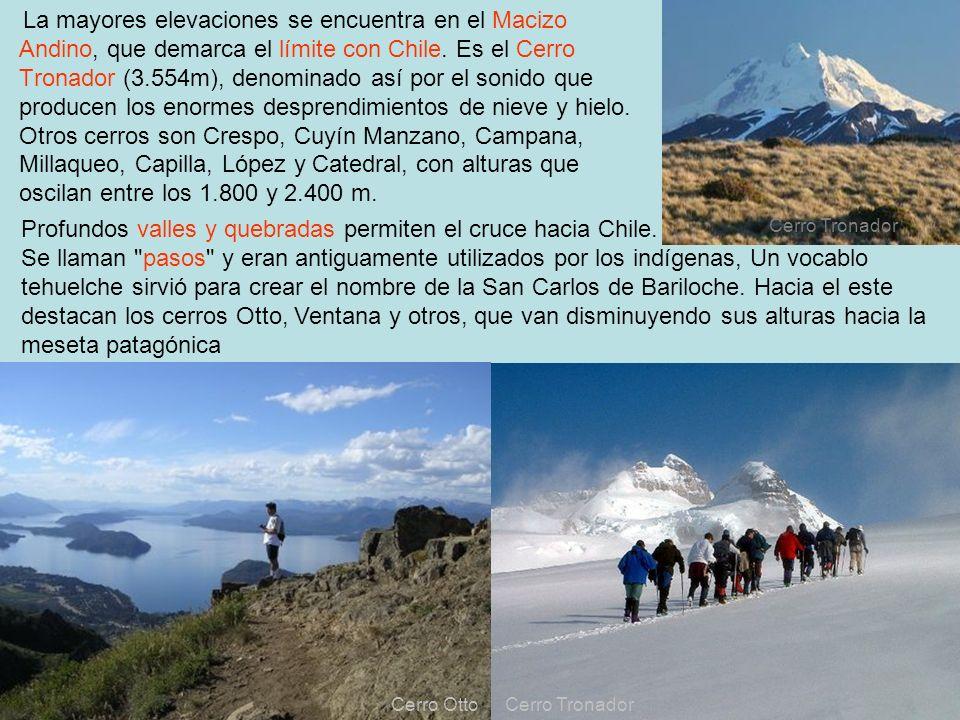 9 La mayores elevaciones se encuentra en el Macizo Andino, que demarca el límite con Chile. Es el Cerro Tronador (3.554m), denominado así por el sonid