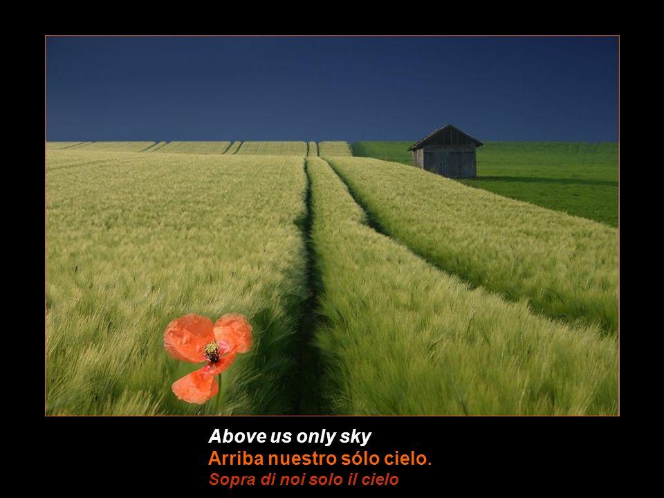 Above us only sky Arriba nuestro sólo cielo. Sopra di noi solo il cielo