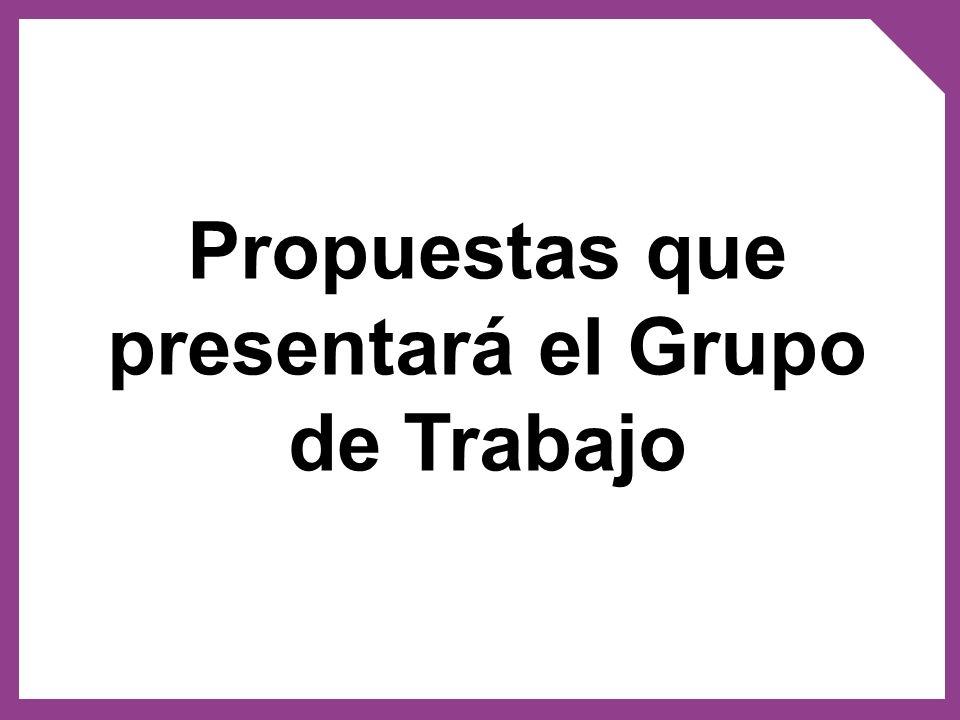 Propuestas que presentará el Grupo de Trabajo