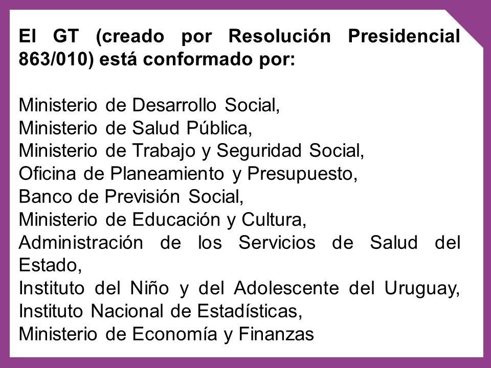 El GT (creado por Resolución Presidencial 863/010) está conformado por: Ministerio de Desarrollo Social, Ministerio de Salud Pública, Ministerio de Tr