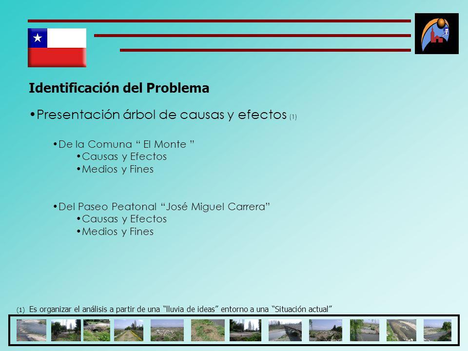 Identificación del Problema Presentación árbol de causas y efectos (1) De la Comuna El Monte Causas y Efectos Medios y Fines Del Paseo Peatonal José M