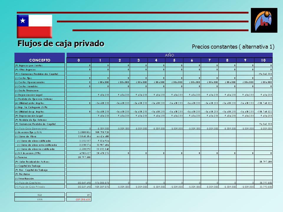 Flujos de caja privado Precios constantes ( alternativa 1)