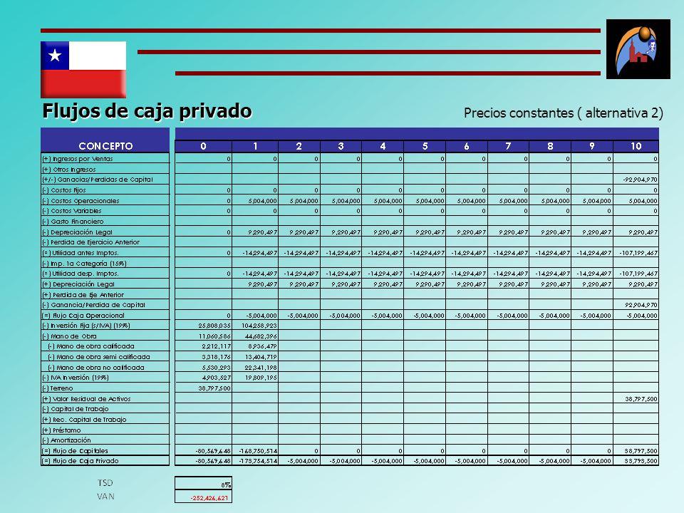 Flujos de caja privado Precios constantes ( alternativa 2)
