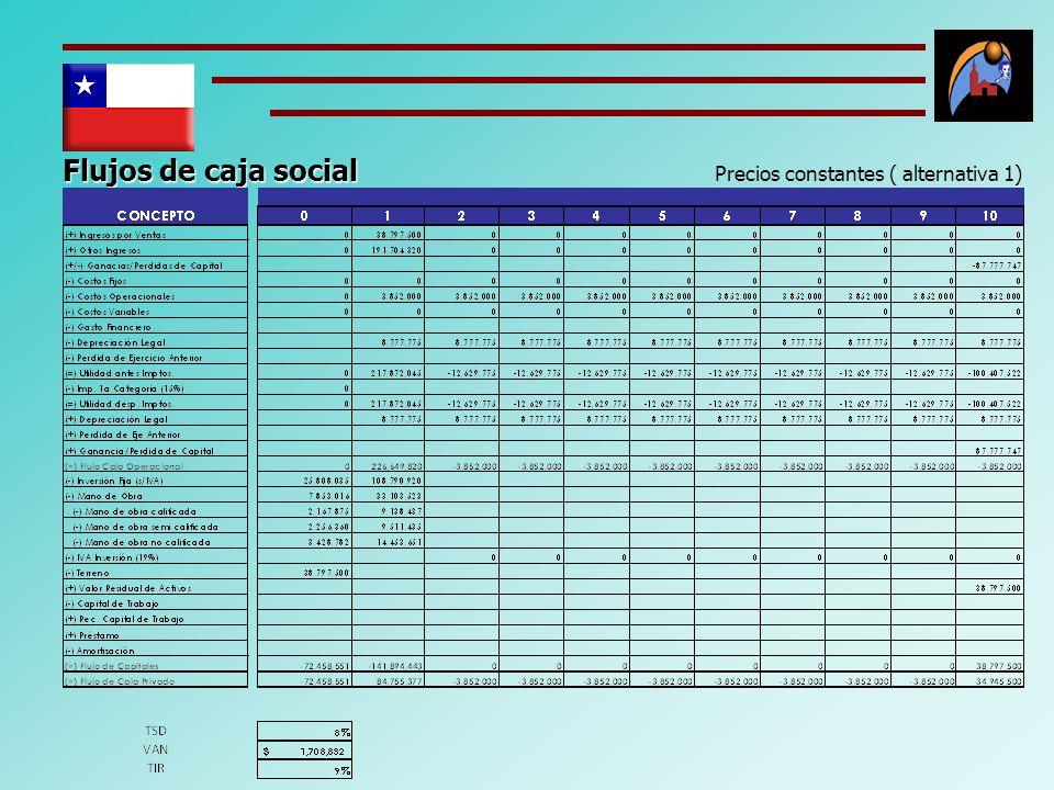 Flujos de caja social Precios constantes ( alternativa 1)