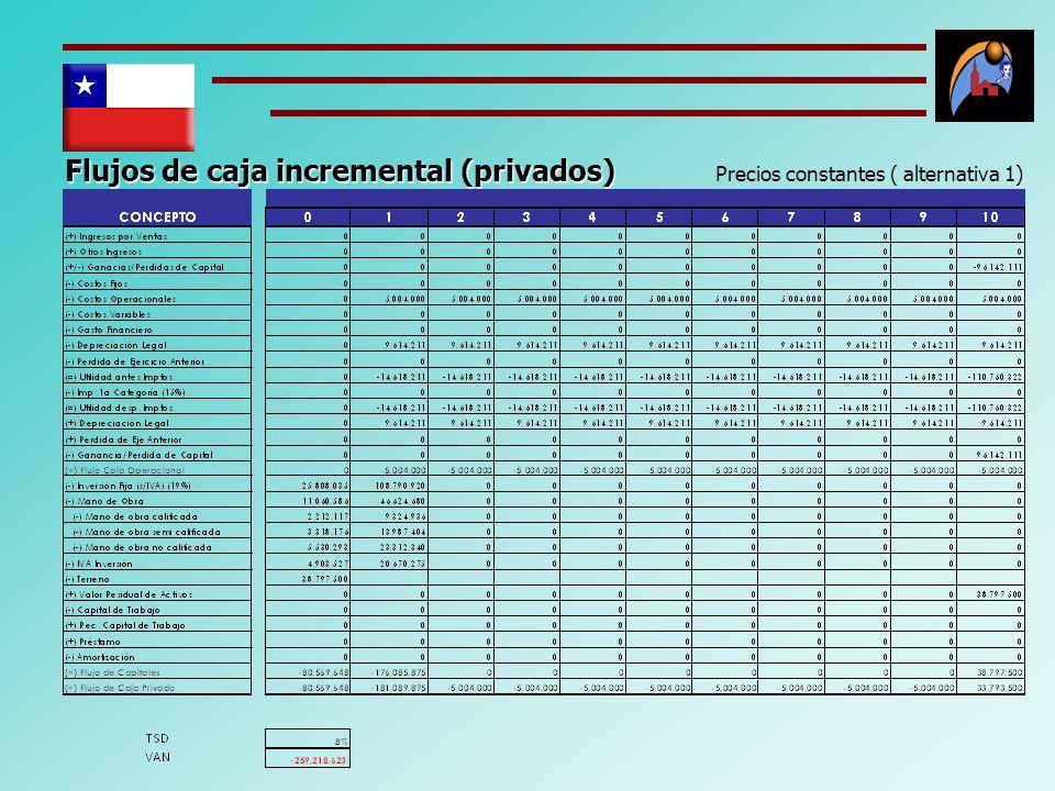 Flujos de caja incremental (privados) Precios constantes ( alternativa 1)