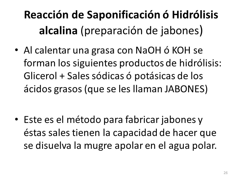 hidrolisis alcalina: