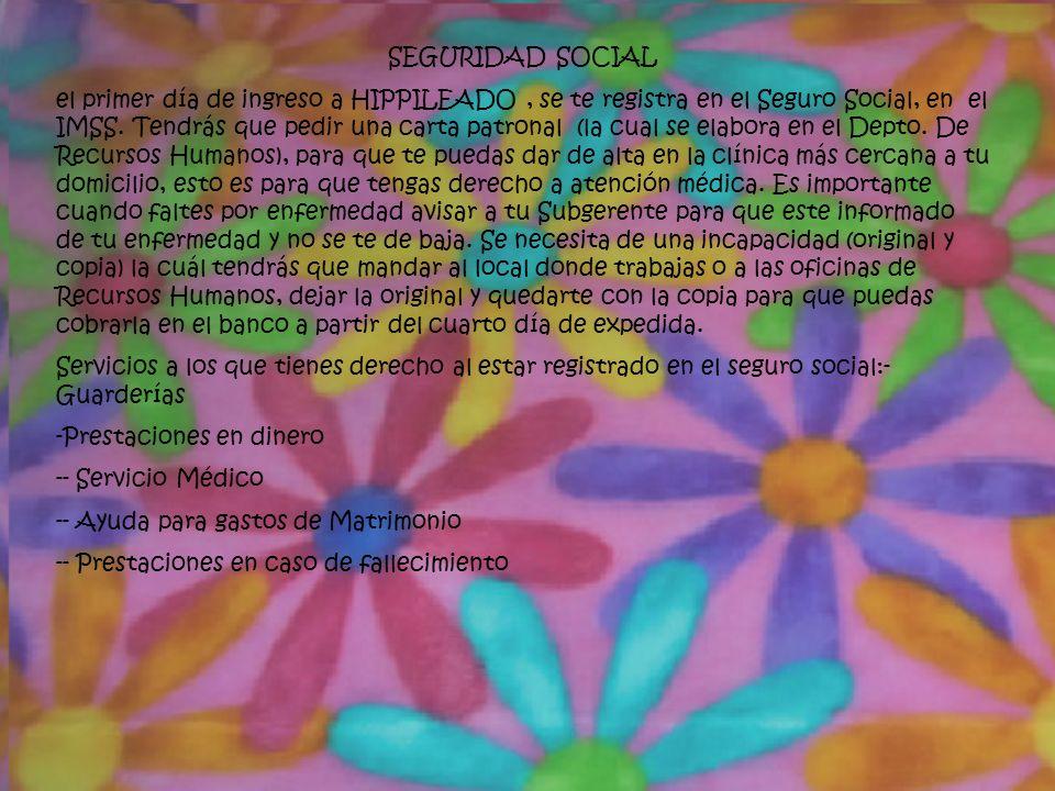 SEGURIDAD SOCIAL el primer día de ingreso a HIPPILEADO, se te registra en el Seguro Social, en el IMSS.