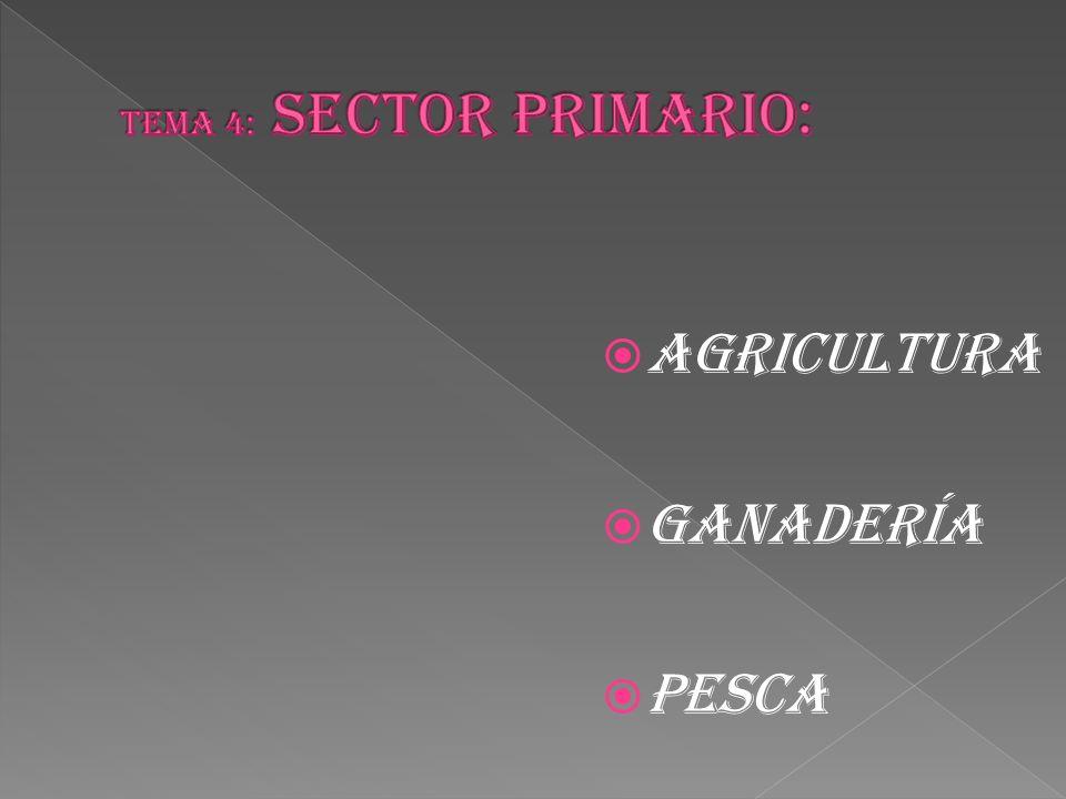  AGRICULTURA  GANADERÍA  PESCA