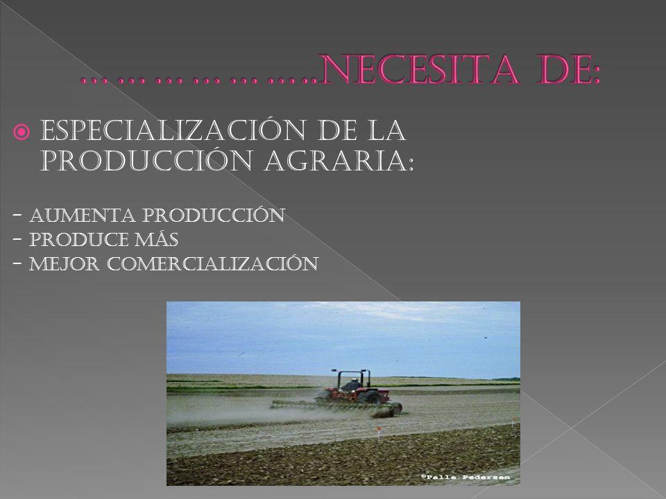  ESPECIALIZACIÓN DE LA PRODUCCIÓN AGRARIA: - AUMENTA PRODUCCIÓN - PRODUCE MÁS - MEJOR COMERCIALIZACIÓN