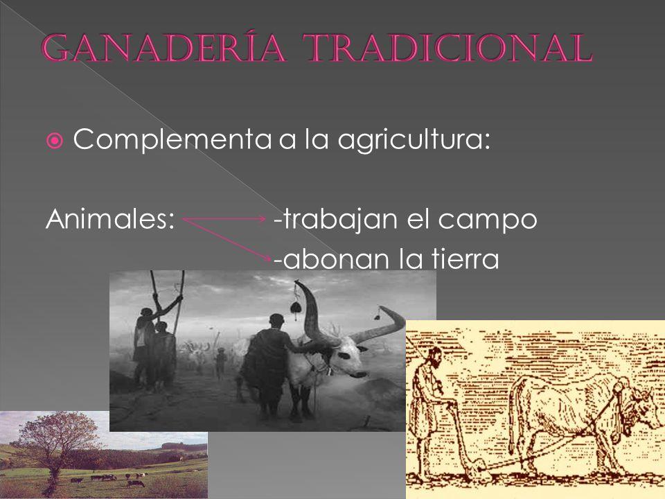  Complementa a la agricultura: Animales: -trabajan el campo -abonan la tierra