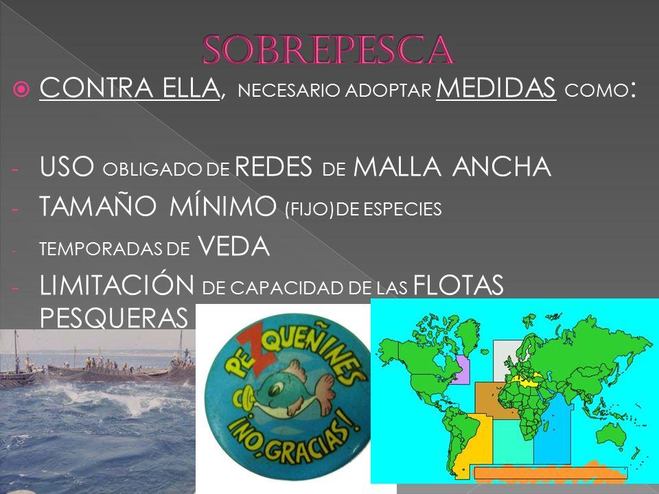  CONTRA ELLA, NECESARIO ADOPTAR MEDIDAS COMO : - USO OBLIGADO DE REDES DE MALLA ANCHA - TAMAÑO MÍNIMO (FIJO)DE ESPECIES - TEMPORADAS DE VEDA - LIMITACIÓN DE CAPACIDAD DE LAS FLOTAS PESQUERAS