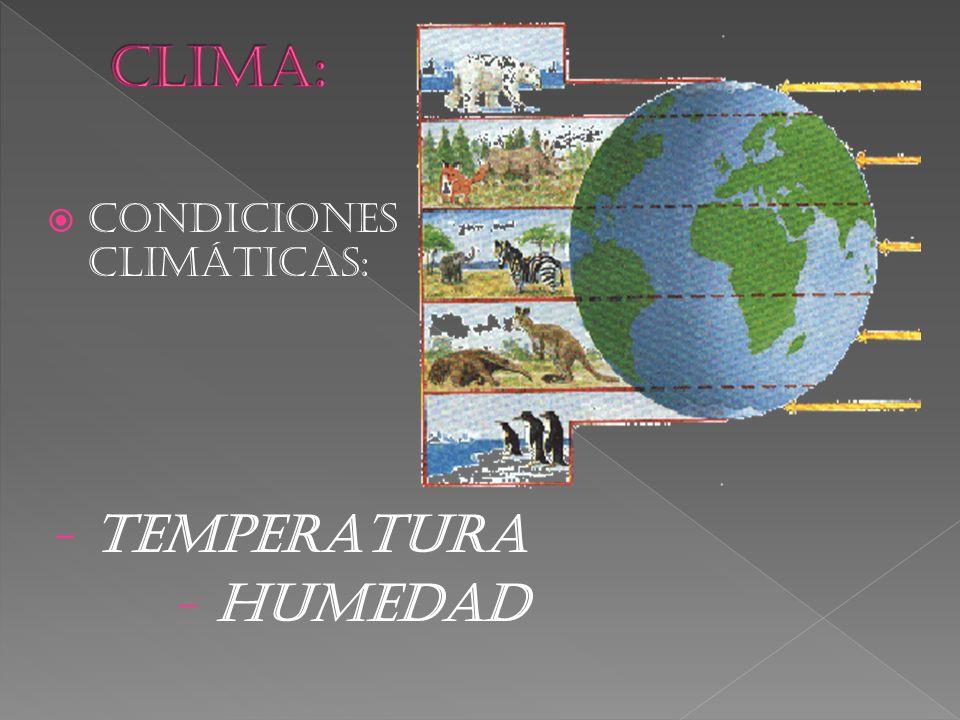  CONDICIONES CLIMÁTICAS: - TEMPERATURA - HUMEDAD