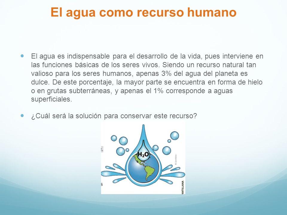 El agua como recurso humano El agua es indispensable para el desarrollo de la vida, pues interviene en las funciones básicas de los seres vivos.