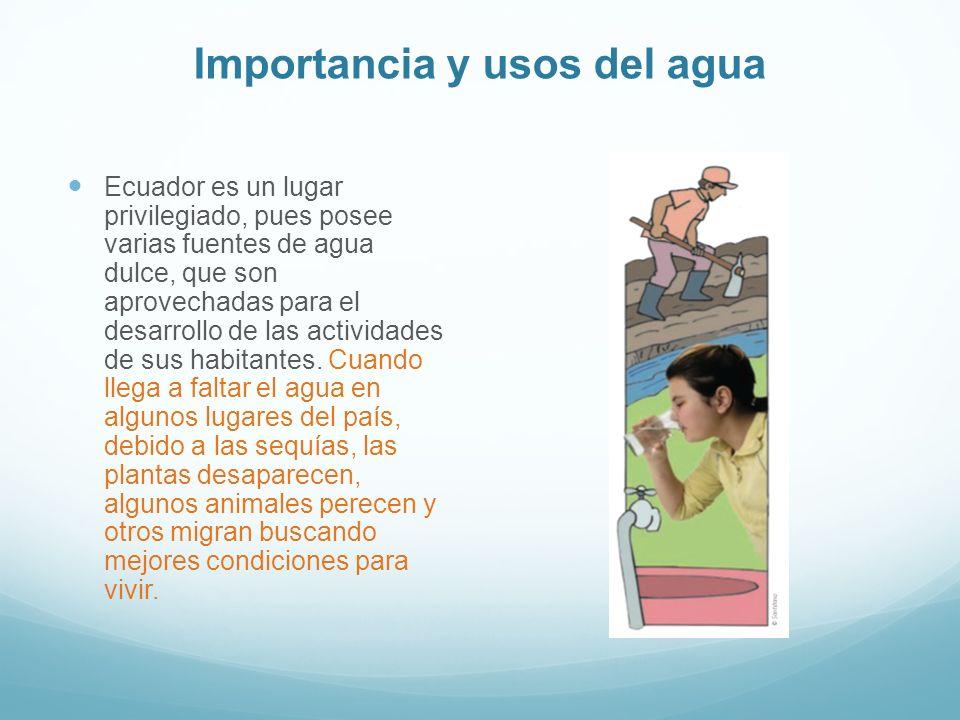 Importancia y usos del agua Ecuador es un lugar privilegiado, pues posee varias fuentes de agua dulce, que son aprovechadas para el desarrollo de las