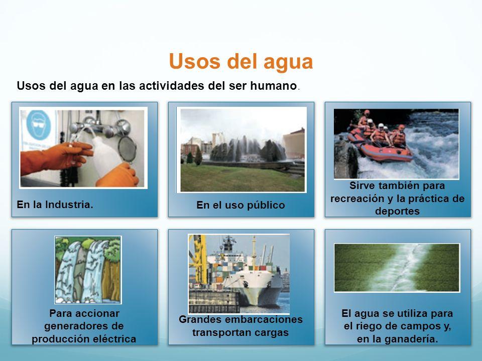 Usos del agua Usos del agua en las actividades del ser humano. Sirve también para recreación y la práctica de deportes En el uso públicoEn la Industri