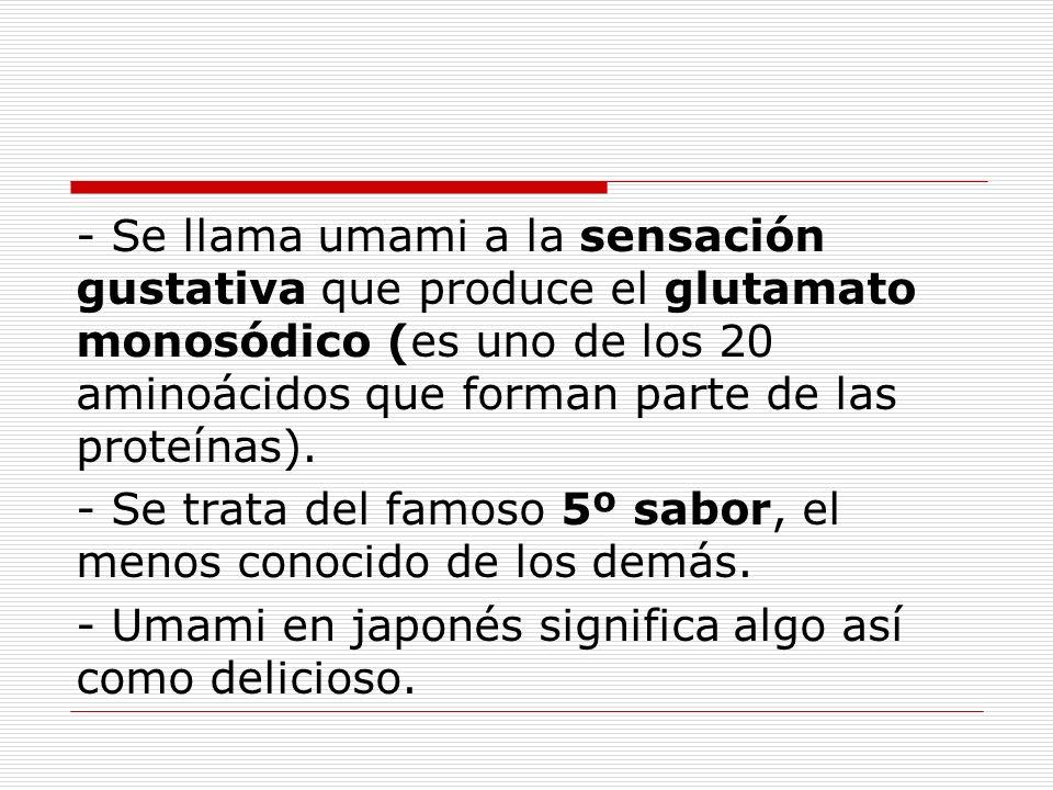 - Se llama umami a la sensación gustativa que produce el glutamato monosódico (es uno de los 20 aminoácidos que forman parte de las proteínas). - Se t