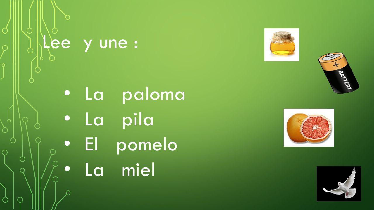 Lee y une : La paloma La pila El pomelo La miel