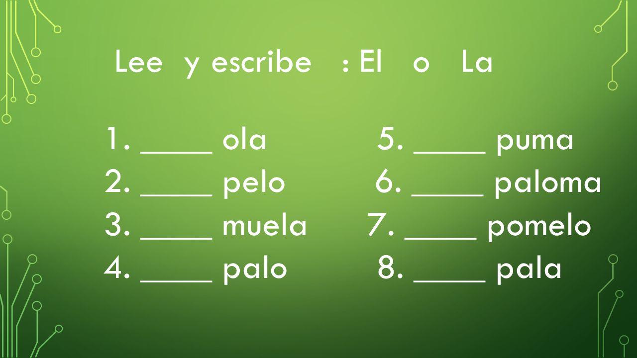 Lee y escribe : El o La 1.____ ola 5. ____ puma 2.
