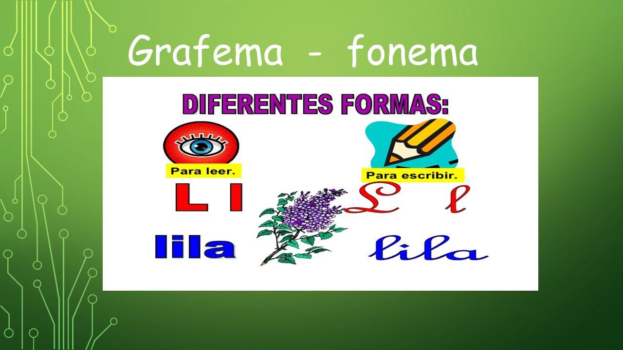 Grafema - fonema
