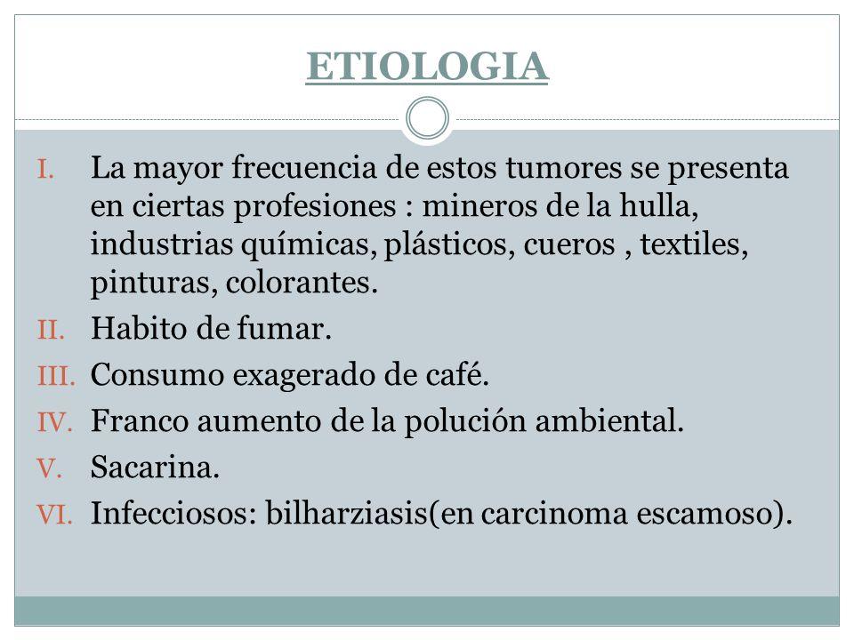 ETIOLOGIA I. La mayor frecuencia de estos tumores se presenta en ciertas profesiones : mineros de la hulla, industrias químicas, plásticos, cueros, te