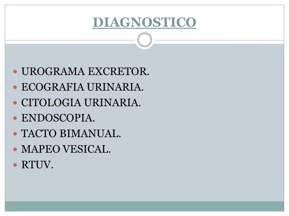 DIAGNOSTICO UROGRAMA EXCRETOR. ECOGRAFIA URINARIA. CITOLOGIA URINARIA. ENDOSCOPIA. TACTO BIMANUAL. MAPEO VESICAL. RTUV.