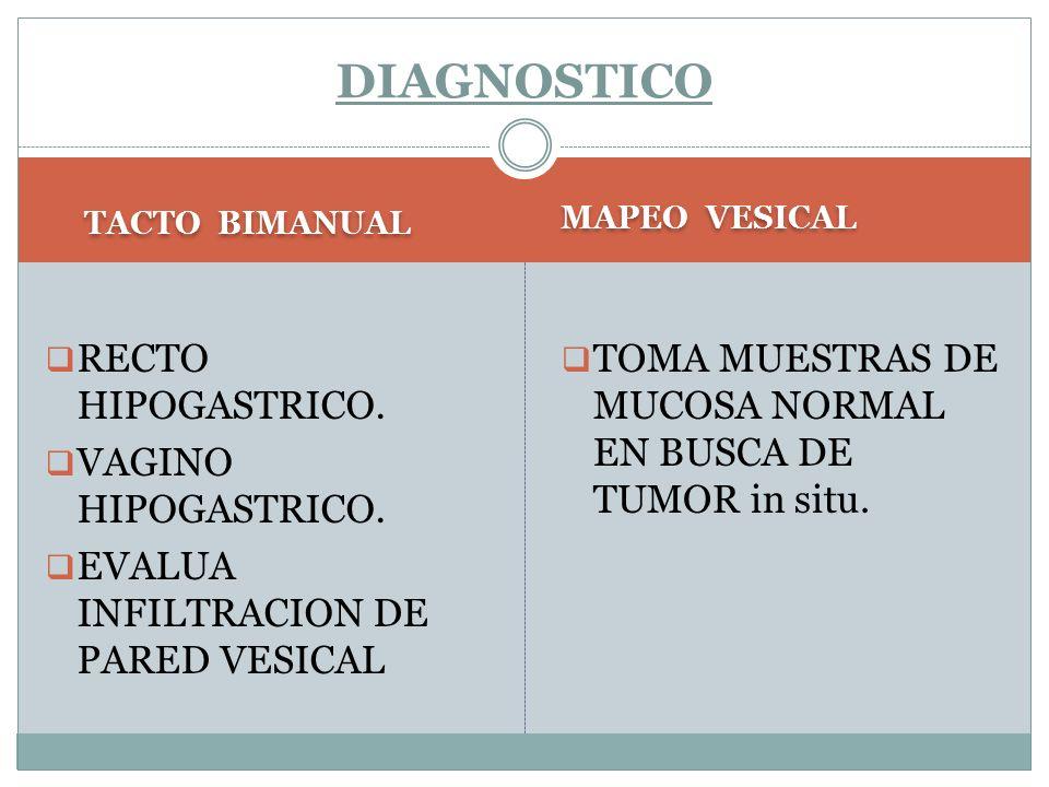 TACTO BIMANUAL MAPEO VESICAL  RECTO HIPOGASTRICO.  VAGINO HIPOGASTRICO.  EVALUA INFILTRACION DE PARED VESICAL  TOMA MUESTRAS DE MUCOSA NORMAL EN B