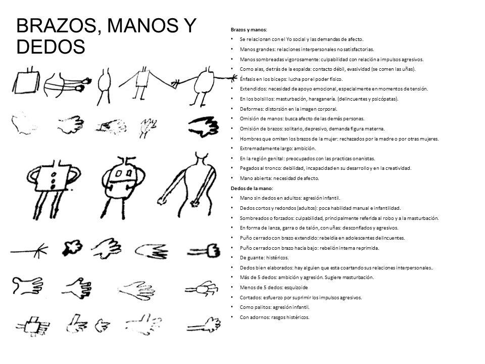 BRAZOS, MANOS Y DEDOS Brazos y manos: Se relacionan con el Yo social y las demandas de afecto.