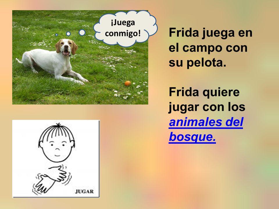 Frida juega en el campo con su pelota. Frida quiere jugar con los animales del bosque.