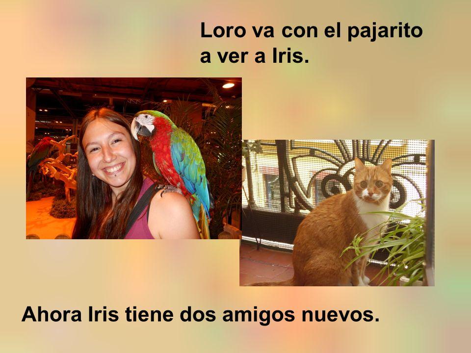 Loro va con el pajarito a ver a Iris. Ahora Iris tiene dos amigos nuevos.