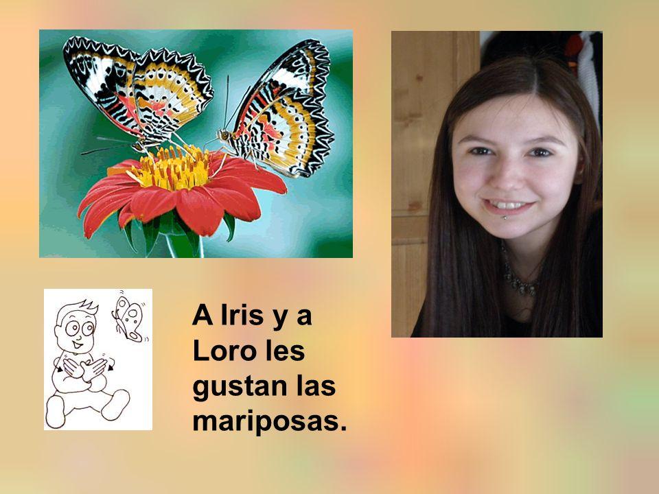 A Iris y a Loro les gustan las mariposas.