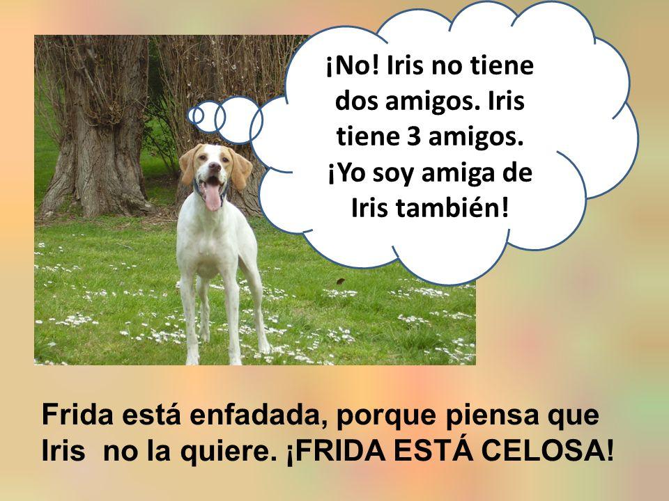 ¡No. Iris no tiene dos amigos. Iris tiene 3 amigos.