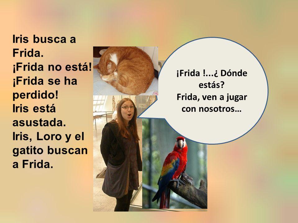 Iris busca a Frida. ¡Frida no está. ¡Frida se ha perdido.