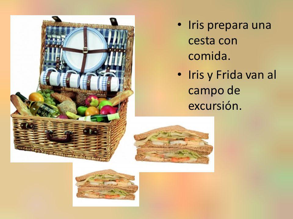 Iris prepara una cesta con comida. Iris y Frida van al campo de excursión.