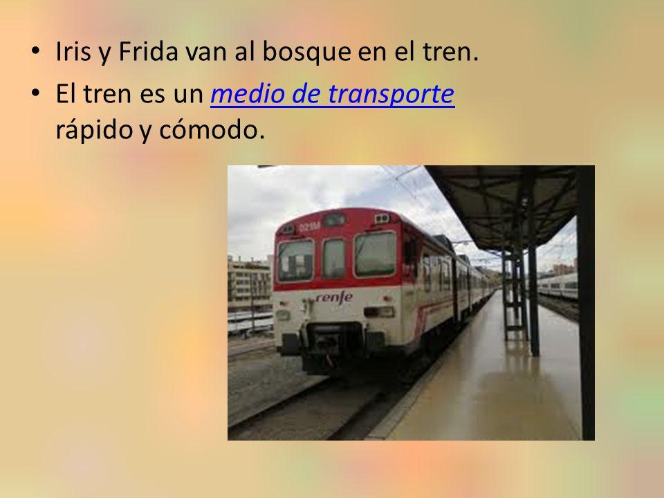 Iris y Frida van al bosque en el tren.