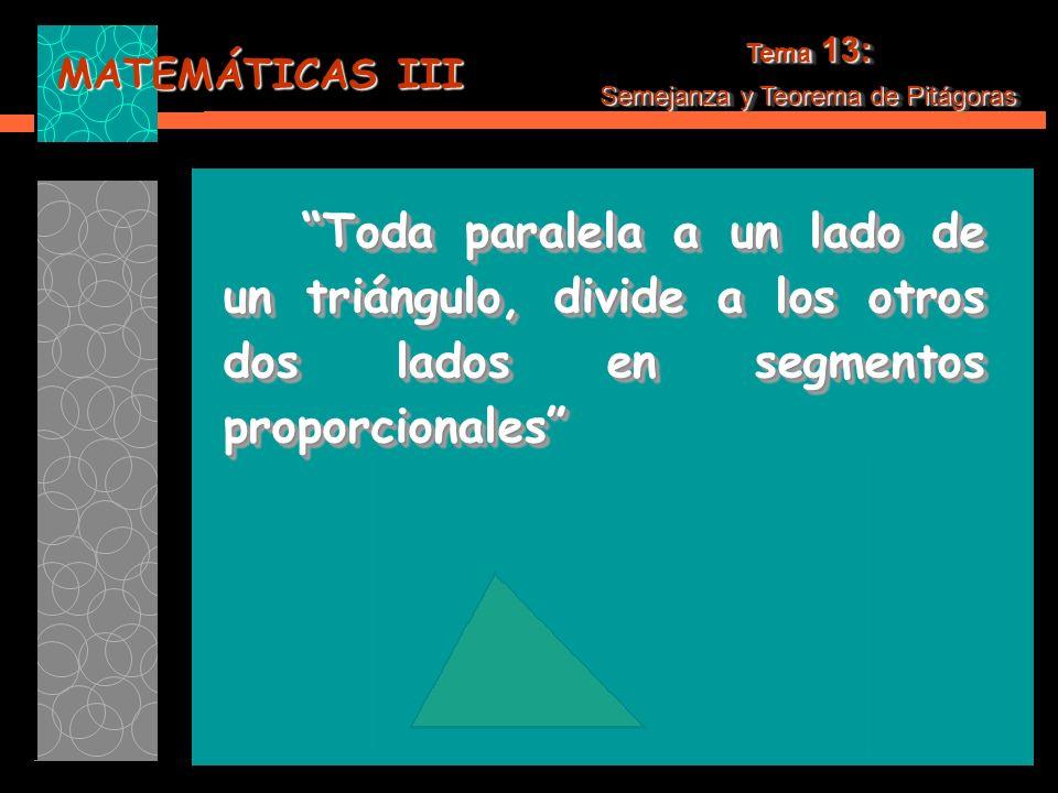 MATEMÁTICAS III Tema 13: Semejanza y Teorema de Pitágoras Tema 13: Semejanza y Teorema de Pitágoras Toda paralela a un lado de un triángulo, divide a los otros dos lados en segmentos proporcionales Toda paralela a un lado de un triángulo, divide a los otros dos lados en segmentos proporcionales