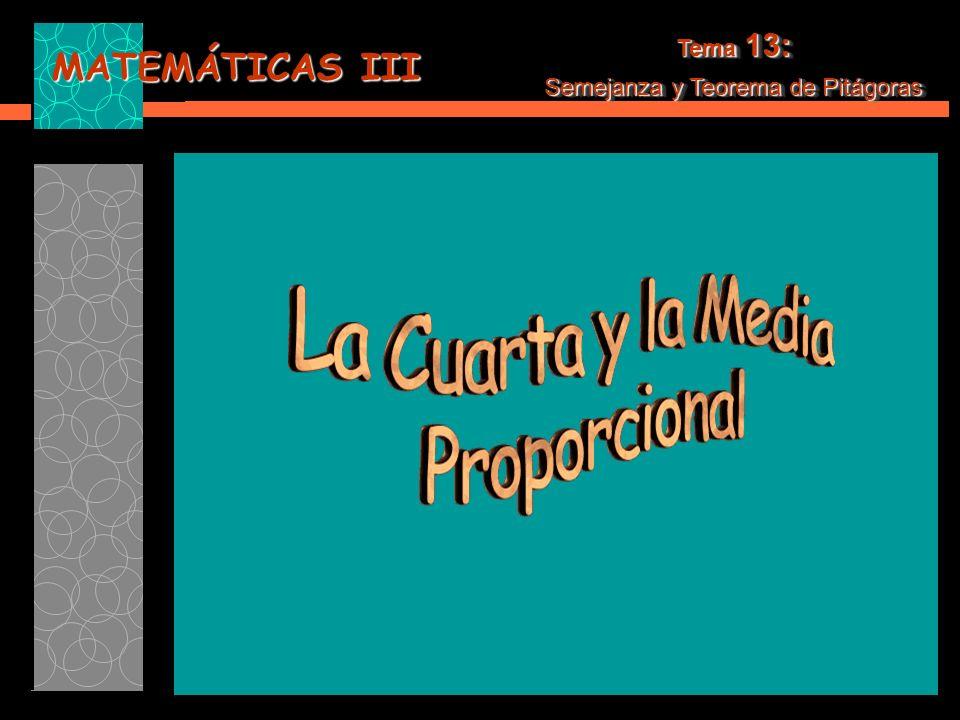 MATEMÁTICAS III Tema 13: Semejanza y Teorema de Pitágoras Tema 13: Semejanza y Teorema de Pitágoras